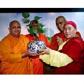 獲斯里蘭卡「摩訶菩提樹」幼苗